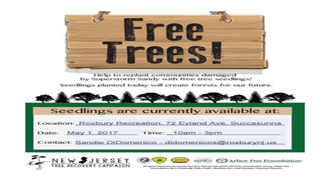 2017 Tree Giveaway Flyer